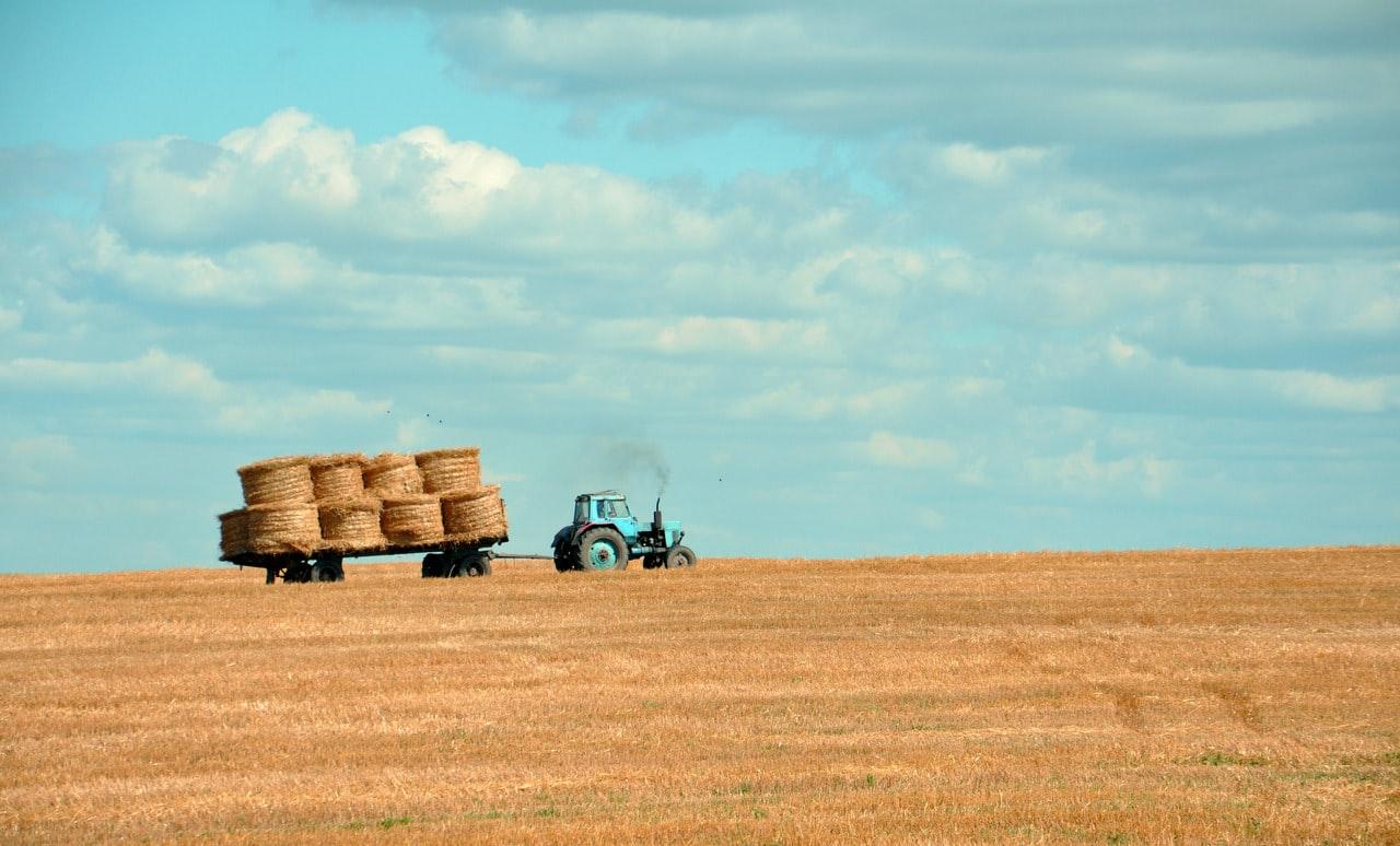 Commercialista Pincin Montebelluna - sostegno a liquidità imprese agricole